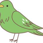 2017年11月ソーシャルレンディング投資その6